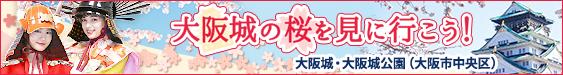 大阪城の桜を見に行こう!